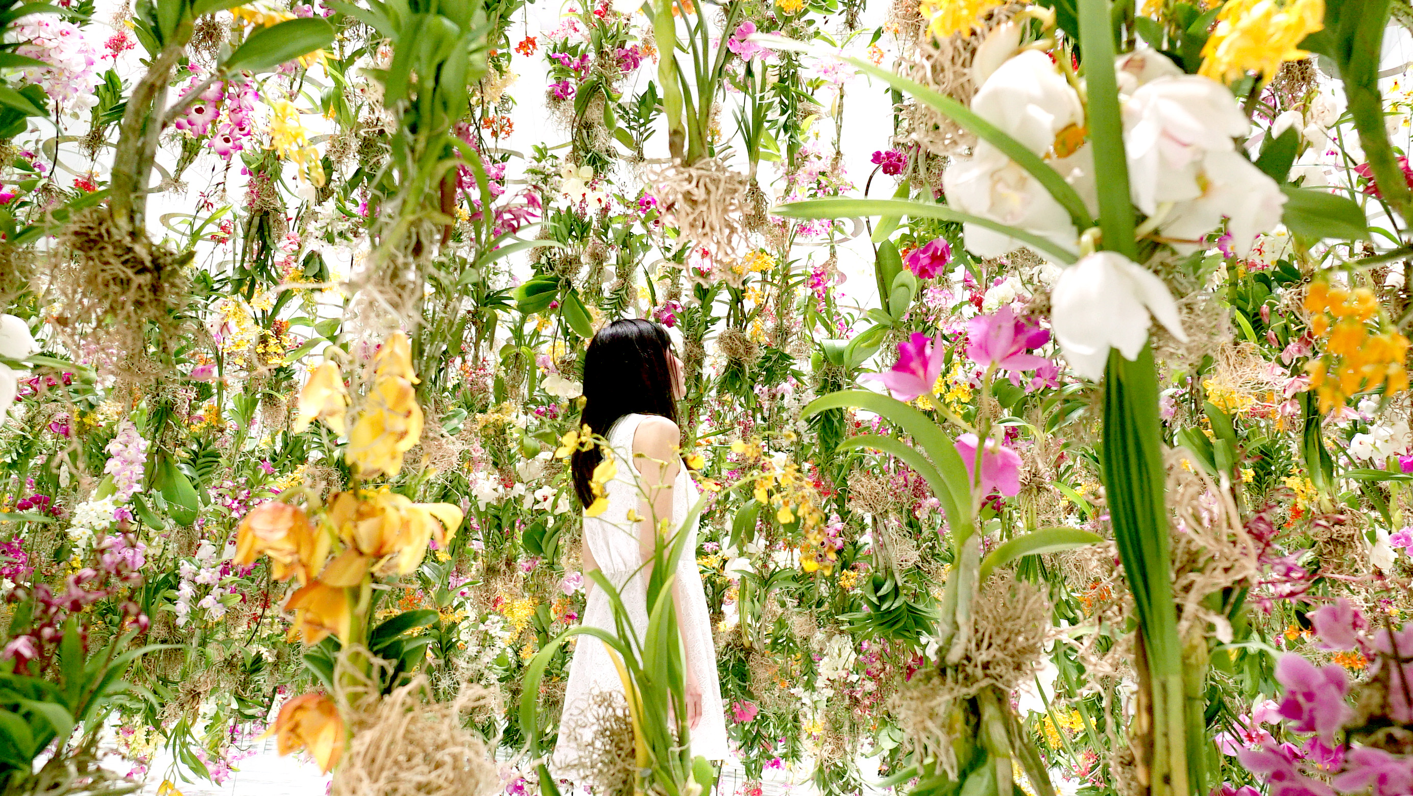 Digitally Controlled Floating Flower Installation By
